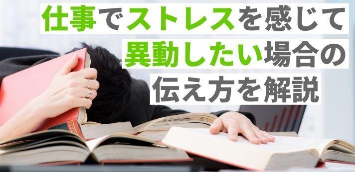過剰なストレスを溜めないための方法は?の画像